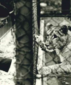 Zooführung zu Günter Peters dem einstigen Tierparkgründer (Teil II)